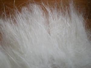fibre cachemire